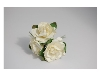 Click here for larger picture - Tea Roses X3 Ivory  £1.79